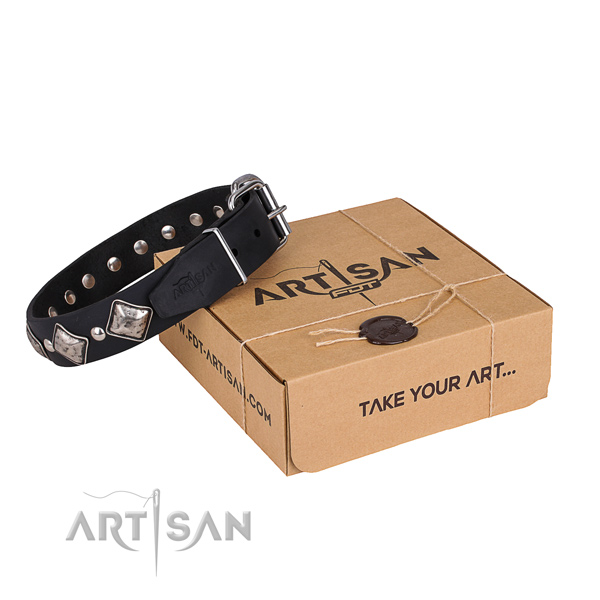 Casual leather dog collar with fancy studs