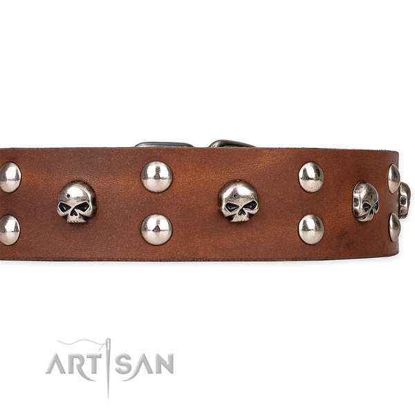 Full grain leather dog collar with worked out exterior