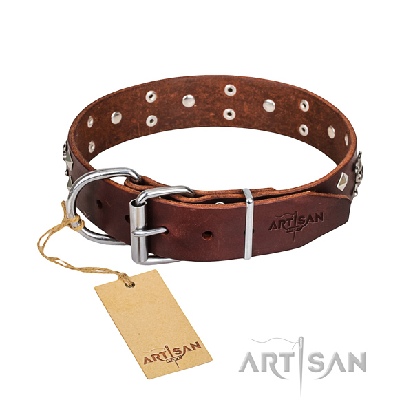 Casual style leather dog collar with exciting adornments