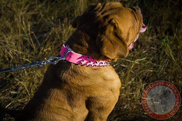 Pink Dogue de Bordeaux collar with riveted fittings