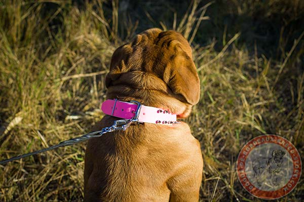 Pink Dogue de Bordeaux collar with reliable hardware