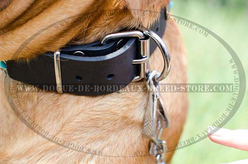 Leather Collar with Blue Stones and Rust-Resistant Durable Fittings is Great for Walking