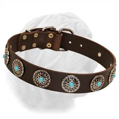 1 1/2 Inches Wide Leather Collar for Dogue de Bordeaux with Blue Stones' Decoration