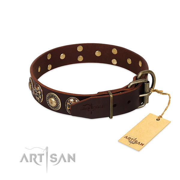 Reliable adornments on daily walking dog collar
