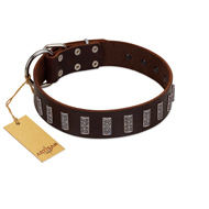 """Brown Lace"" Handmade FDT Artisan Brown Leather Dogue de Bordeaux Collar for Everyday Walks"