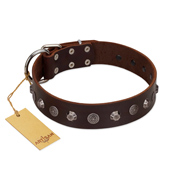 """Dark Chocolate"" Handmade FDT Artisan Brown Leather Dogue de Bordeaux Collar with Studs"