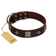"""Cold Star"" Designer FDT Artisan Brown Leather Dogue de Bordeaux Collar with Silver-Like Adornments"