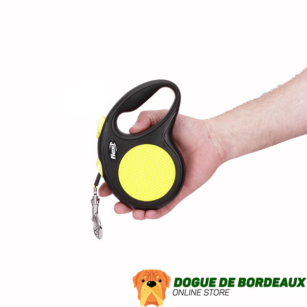 Walking Retractable Leash Neon Style for Total Safety