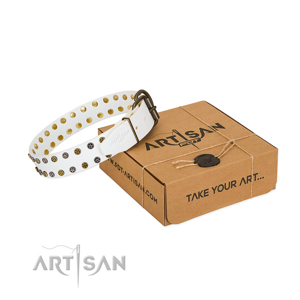 Amazing full grain leather dog collar with durable adornments
