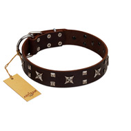 """Bigwig Woof"" FDT Artisan Brown Leather Dogue de Bordeaux Collar with Chrome Plated Stars and Square Studs"