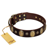 """Bronze Idol"" FDT Artisan Brown Leather Dogue de Bordeaux Collar with Eye-catching Ovals and Small Studs"