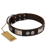 """Baller Status"" FDT Artisan Brown Leather Dogue de Bordeaux Collar Adorned with a Set of Chrome Plated Studs and Plates"