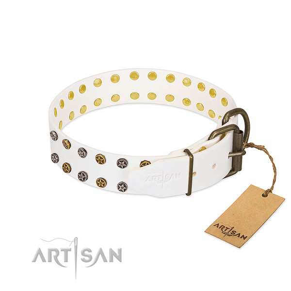 Significant natural leather dog collar with rust-proof studs