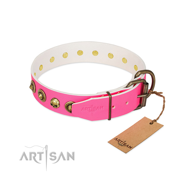 Leather collar with significant adornments for your pet