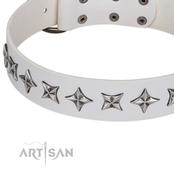 Easy wearing adorned dog collar of quality natural leather