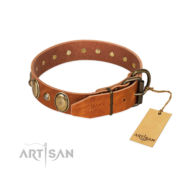 Studded leather dog collar with rust-proof D-ring