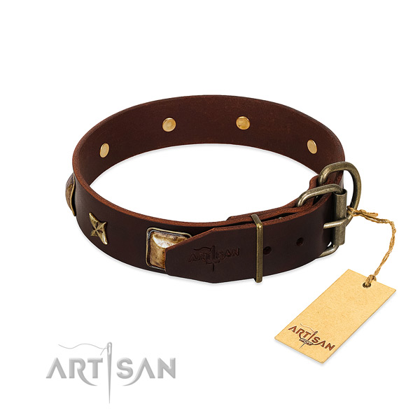 Full grain leather dog collar with corrosion resistant hardware and embellishments