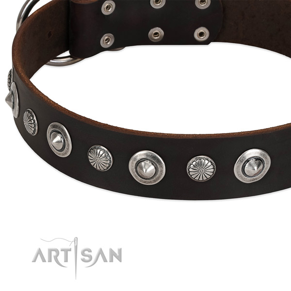 Extraordinary adorned dog collar of high quality full grain natural leather
