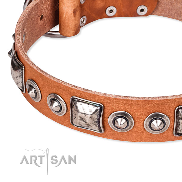 High quality genuine leather dog collar created for your attractive four-legged friend