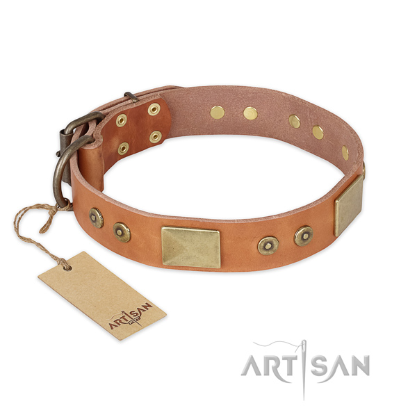 Designer full grain natural leather dog collar for everyday walking