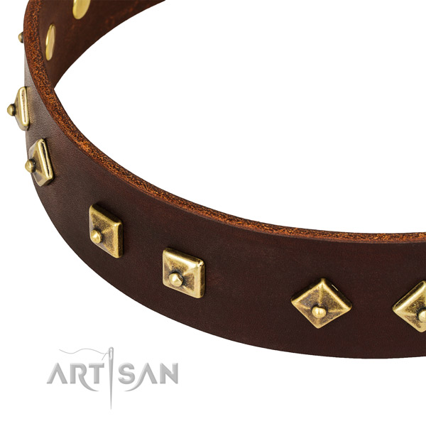 Top notch genuine leather collar for your impressive pet