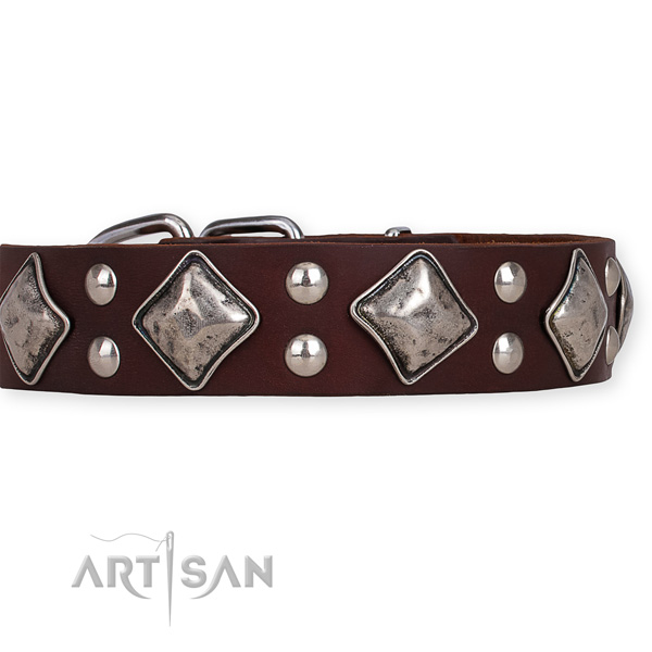 Leather dog collar with stylish design strong studs