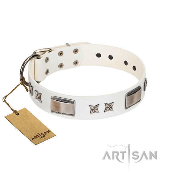 Impressive dog collar of leather