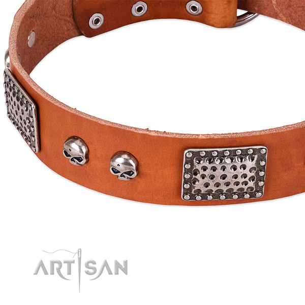 Durable buckle on natural genuine leather dog collar for your four-legged friend