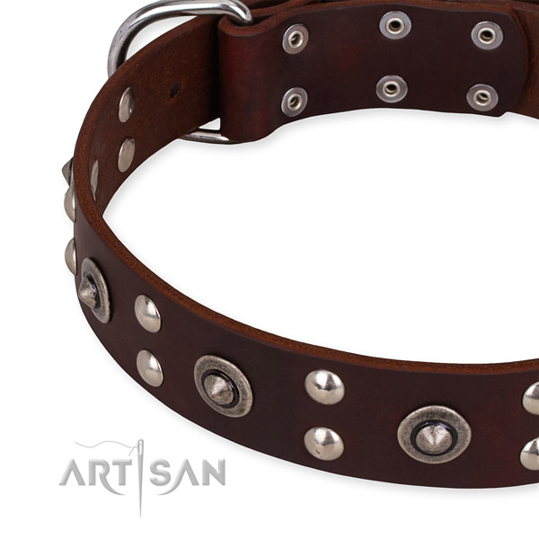 Full grain leather collar with rust-proof hardware for your handsome pet