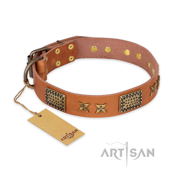 Remarkable leather dog collar with rust resistant buckle