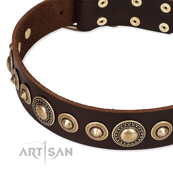 Quality genuine leather dog collar crafted for your handsome canine