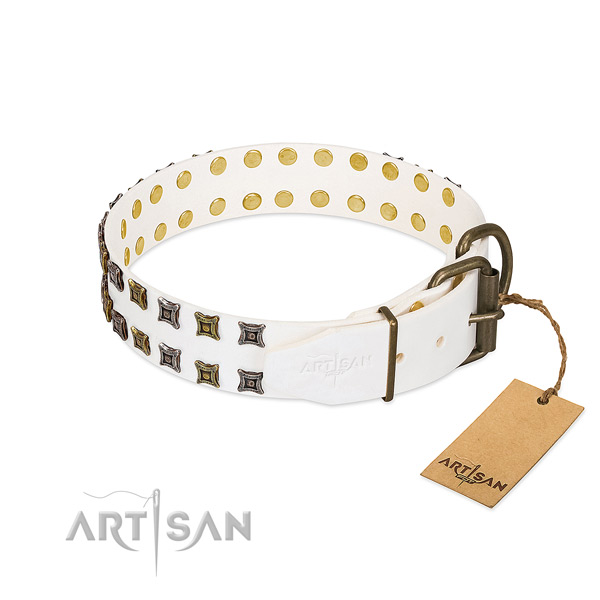 Full grain natural leather collar with unique decorations for your four-legged friend