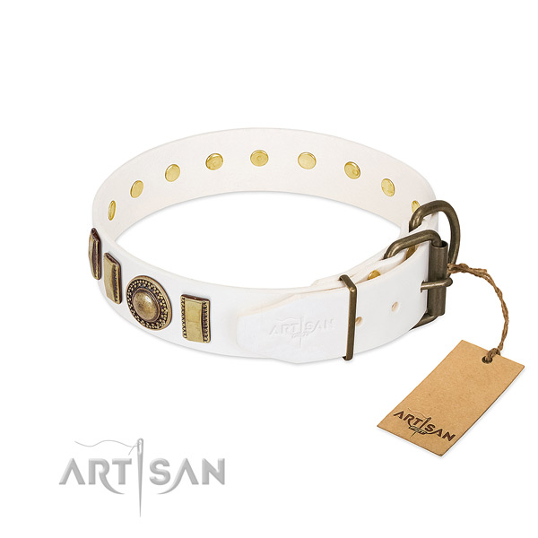 Top rate leather dog collar created for your canine