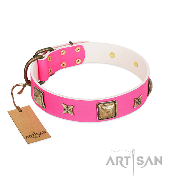 Full grain leather dog collar of reliable material with fashionable embellishments