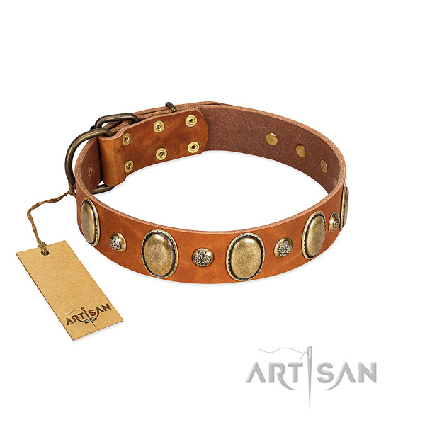 Full grain genuine leather dog collar of soft to touch material with stylish design adornments