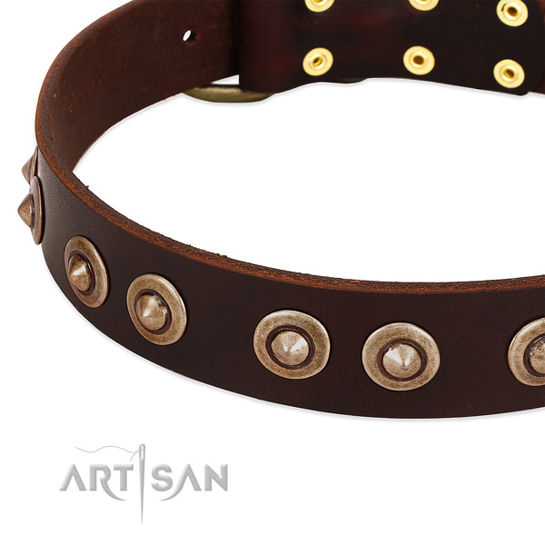 Corrosion resistant traditional buckle on natural genuine leather dog collar for your dog