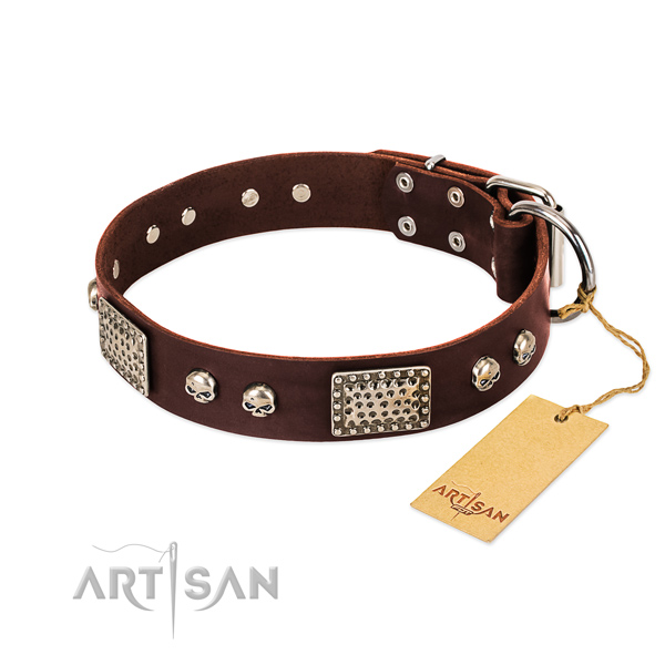 Easy to adjust full grain natural leather dog collar for everyday walking your dog