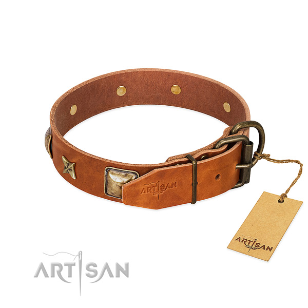 Leather dog collar with rust resistant fittings and adornments