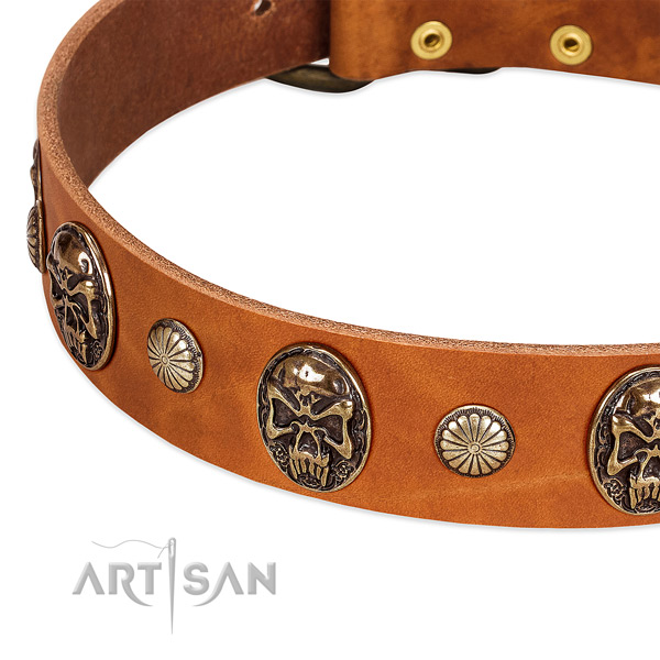 Rust resistant adornments on full grain leather dog collar for your canine