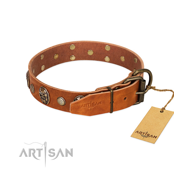 Rust-proof traditional buckle on natural genuine leather collar for walking your four-legged friend