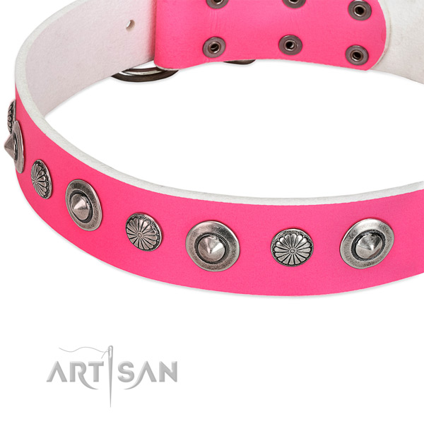 Full grain leather collar with corrosion resistant buckle for your stylish dog
