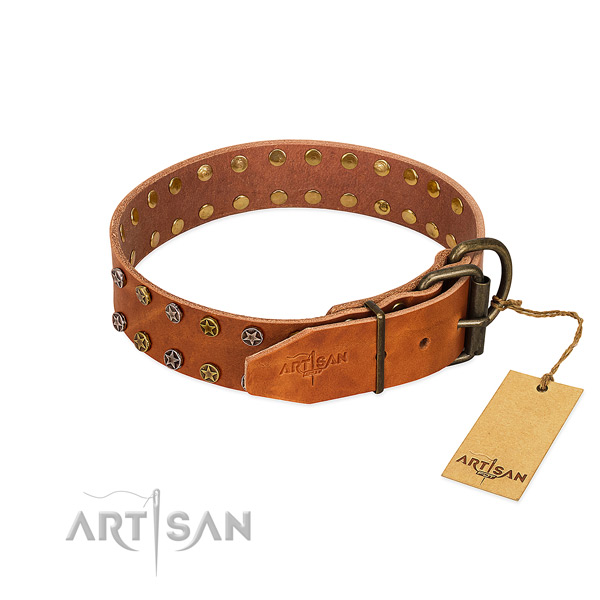 Comfy wearing leather dog collar with exceptional decorations