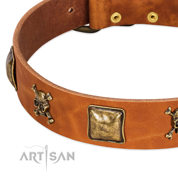 Unique full grain natural leather dog collar with strong studs