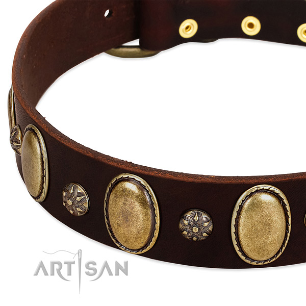 Stylish walking top rate genuine leather dog collar