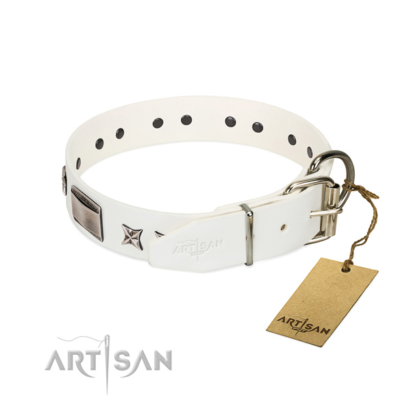 Awesome collar of natural leather for your handsome dog