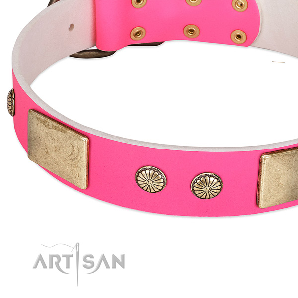 Durable decorations on genuine leather dog collar for your canine