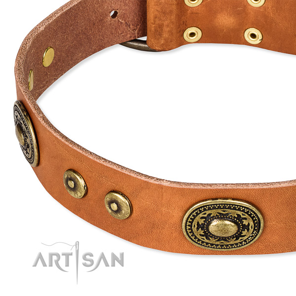 Full grain genuine leather dog collar made of high quality material with embellishments