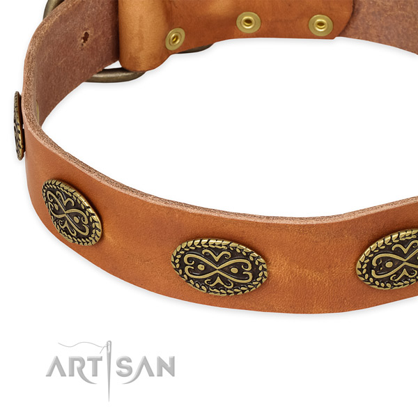 Decorated genuine leather collar for your handsome pet