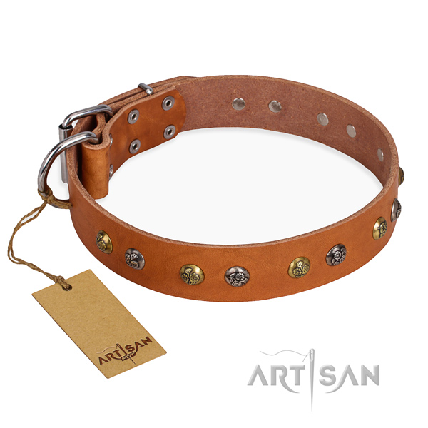 Comfy wearing remarkable dog collar with corrosion resistant traditional buckle