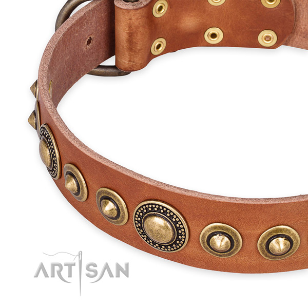 Reliable natural genuine leather dog collar crafted for your beautiful dog